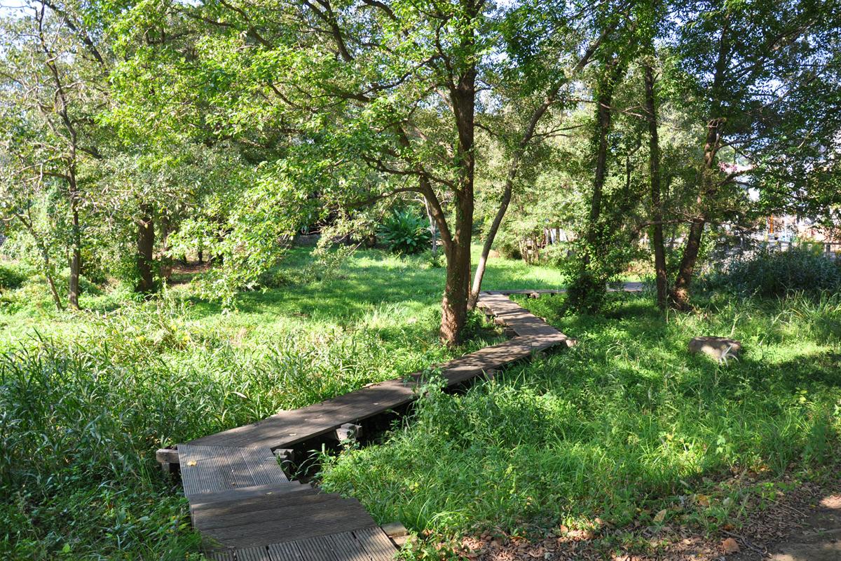 Sakaigawa / Kiyozumi Green Area, Maruike Pond
